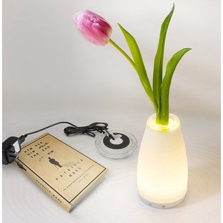 LED Vase Light & Flower, Glasvase